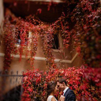 Когда сезон свадеб в Чехии?